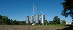 Goldsboro Milling - Vanceboro-05
