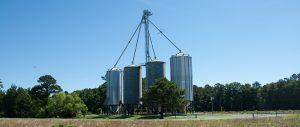 Goldsboro Milling - Vanceboro-15